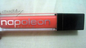 Napoleon Perdis Protégé Lip Gloss Review