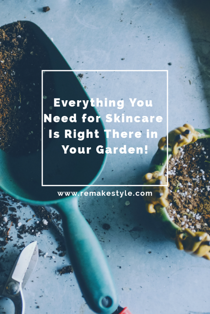 Everything You Need for Skincare Is Right There in Your Garden!